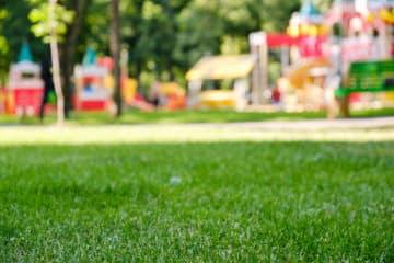Grüne Wiese vor einem bunten Spielplatz