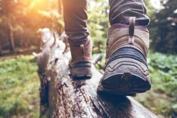 Wandern über einen Baumstamm
