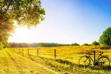 Header Rad und Wandern